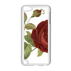 Rose 1077964 1280 Apple Ipod Touch 5 Case (white) by vintage2030