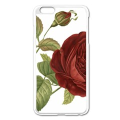 Rose 1077964 1280 Apple Iphone 6 Plus/6s Plus Enamel White Case by vintage2030