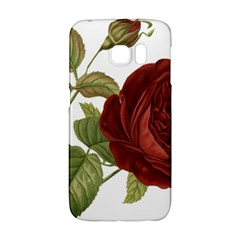 Rose 1077964 1280 Samsung Galaxy S6 Edge Hardshell Case by vintage2030