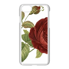 Rose 1077964 1280 Apple Iphone 7 Seamless Case (white) by vintage2030