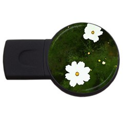 Daisies In Green Usb Flash Drive Round (2 Gb)