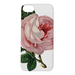Rose 1078272 1920 Apple Iphone 5s/ Se Hardshell Case