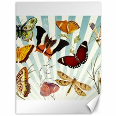 Butterfly 1064147 1920 Canvas 36  X 48  by vintage2030