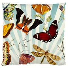 Butterfly 1064147 1920 Large Cushion Case (two Sides) by vintage2030