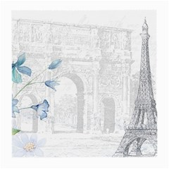 French 1047909 1280 Medium Glasses Cloth