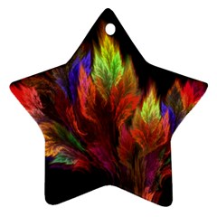 Abstract Digital Art Fractal Star Ornament (two Sides) by Samandel