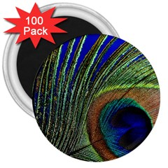Peacock Feather Macro Peacock Bird 3  Magnets (100 Pack) by Simbadda