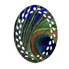 Peacock Feather Macro Peacock Bird Oval Filigree Ornament (two Sides) by Simbadda