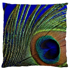 Peacock Feather Macro Peacock Bird Large Flano Cushion Case (one Side) by Simbadda