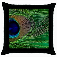 Peacock Feather Macro Peacock Bird Throw Pillow Case (black)