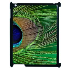 Peacock Feather Macro Peacock Bird Apple Ipad 2 Case (black)