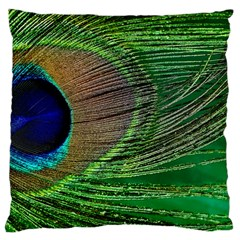 Peacock Feather Macro Peacock Bird Large Cushion Case (two Sides)