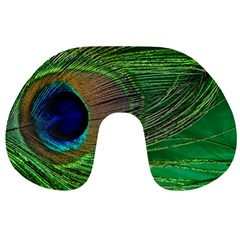 Peacock Feather Macro Peacock Bird Travel Neck Pillows