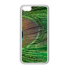 Peacock Feather Macro Peacock Bird Apple Iphone 5c Seamless Case (white) by Simbadda