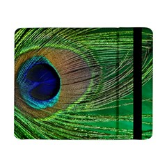 Peacock Feather Macro Peacock Bird Samsung Galaxy Tab Pro 8 4  Flip Case