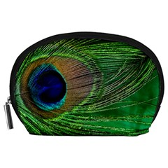 Peacock Feather Macro Peacock Bird Accessory Pouch (large)