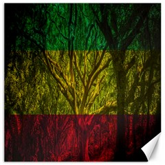Rasta Forest Rastafari Nature Canvas 20  X 20