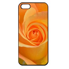 Flower Plant Rose Nature Garden Apple Iphone 5 Seamless Case (black) by Celenk