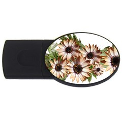Sun Daisies Leaves Flowers Usb Flash Drive Oval (2 Gb)