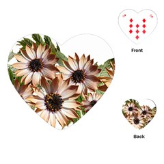 Sun Daisies Leaves Flowers Playing Cards (heart) by Celenk
