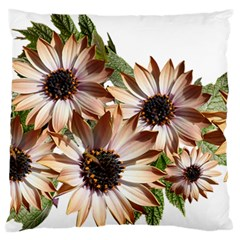 Sun Daisies Leaves Flowers Large Flano Cushion Case (two Sides)