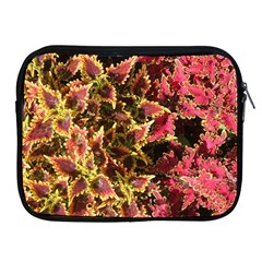 Plant Leaves Foliage Pattern Apple Ipad 2/3/4 Zipper Cases by Celenk
