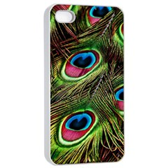 Peacock Feathers Color Plumage Apple Iphone 4/4s Seamless Case (white) by Celenk