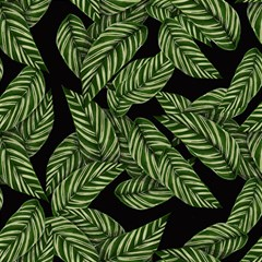 Tropical Leaves On Black Magic Photo Cube by snowwhitegirl