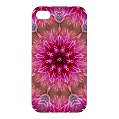 Flower Mandala Art Pink Abstract Apple Iphone 4/4s Premium Hardshell Case by Simbadda
