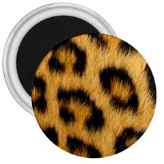 Animal Print 3  Magnets by NSGLOBALDESIGNS2