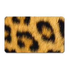 Animal Print 3 Magnet (rectangular) by NSGLOBALDESIGNS2