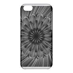 Sunflower Print Apple Iphone 5c Hardshell Case by NSGLOBALDESIGNS2