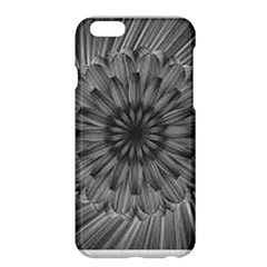 Sunflower Print Apple Iphone 6 Plus/6s Plus Hardshell Case by NSGLOBALDESIGNS2