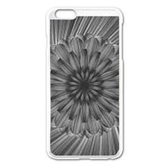 Sunflower Print Apple Iphone 6 Plus/6s Plus Enamel White Case by NSGLOBALDESIGNS2