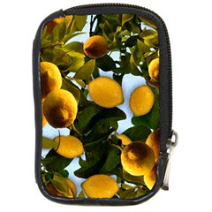 Lemon Tree Pattern Compact Camera Leather Case by bloomingvinedesign