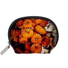 Pile Of Tiny Pumpkins Accessory Pouch (small) by bloomingvinedesign