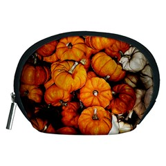 Pile Of Tiny Pumpkins Accessory Pouch (medium) by bloomingvinedesign