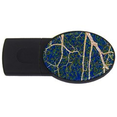 Green Leaves Blue Background Night Usb Flash Drive Oval (2 Gb) by Nexatart