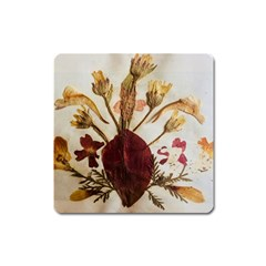 Holy Land Flowers 3 Square Magnet by DeneWestUK