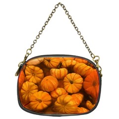 Pumpkins Tiny Gourds Pile Chain Purse (two Sides)