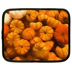 Pumpkins Tiny Gourds Pile Netbook Case (xxl) by bloomingvinedesign