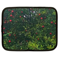 Apple Tree Close Up Netbook Case (large) by bloomingvinedesign