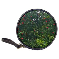Apple Tree Close Up Classic 20 Cd Wallets