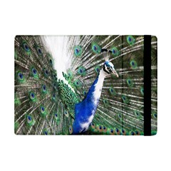 Animal Photography Peacock Bird Ipad Mini 2 Flip Cases