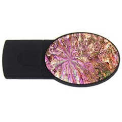 Background Swirl Art Abstract Usb Flash Drive Oval (4 Gb) by Sapixe
