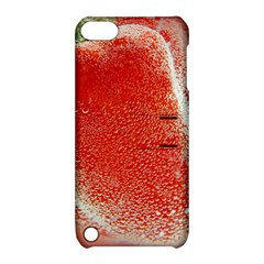 Red Pepper And Bubbles Apple Ipod Touch 5 Hardshell Case With Stand by Jojostore
