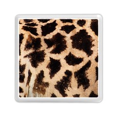 Yellow And Brown Spots On Giraffe Skin Texture Memory Card Reader (square) by Jojostore