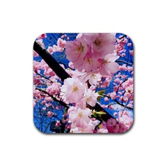 Flower Cherry Wood Tree Flowers Rubber Square Coaster (4 Pack)