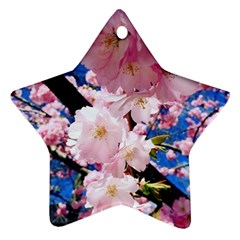 Flower Cherry Wood Tree Flowers Star Ornament (two Sides)
