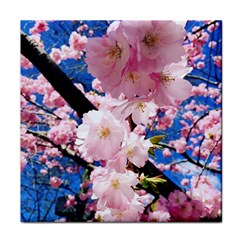 Flower Cherry Wood Tree Flowers Face Towel